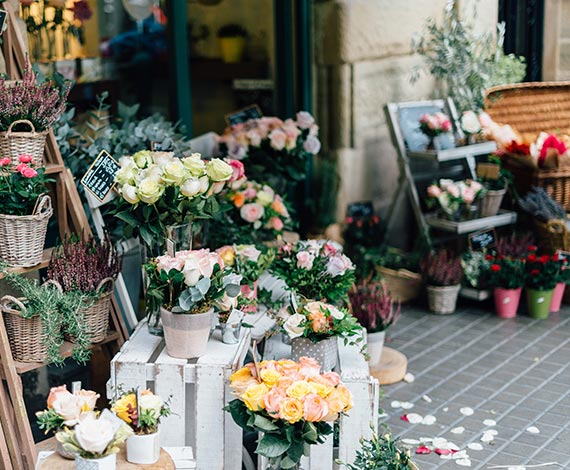 Arreglos de flores y regalos en Arequipa